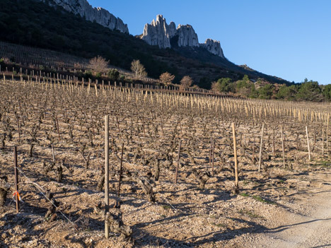 Dentelles Sarrasines, le Rocher du Turc