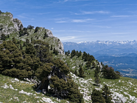 Point 1803 des Rochers du Parquet